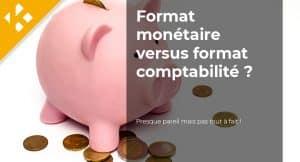 Quelle est la différence entre format monétaire et format comptabilité ?