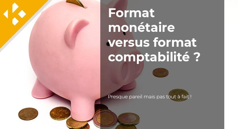 Read more about the article Quelle est la différence entre format monétaire et format comptabilité ?