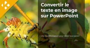 Read more about the article Comment convertir un texte en image sur PowerPoint ?